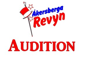 audition2